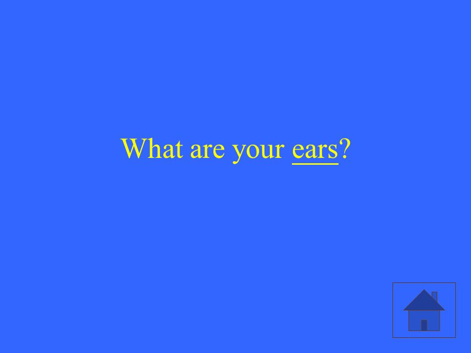 What are your ears?