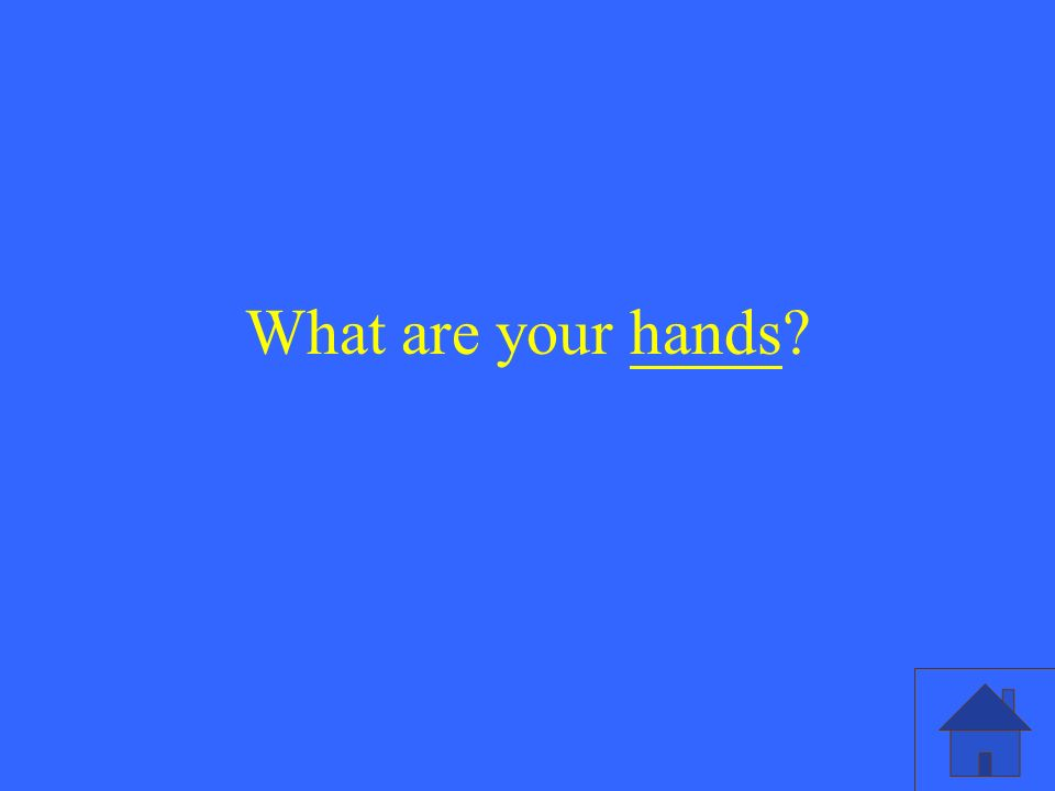 What are your hands