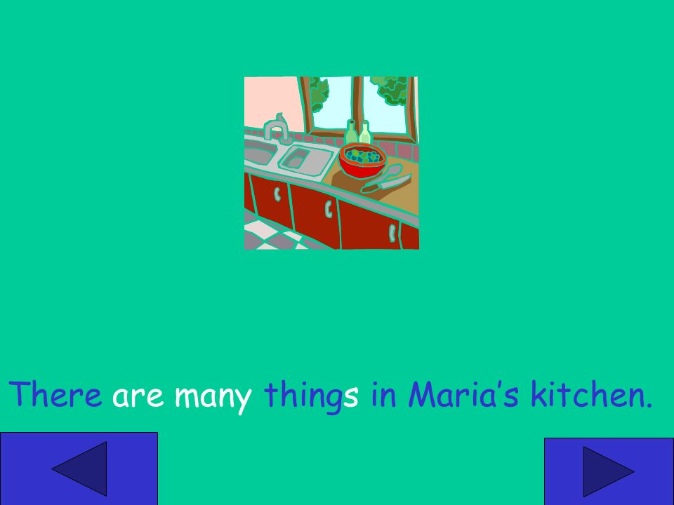 There is something in Marias kitchen. There is many things in Marias kitchen.