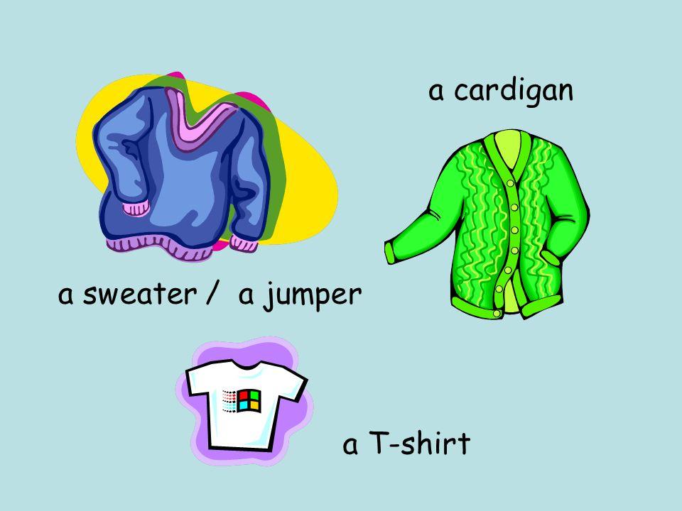 a sweater / a jumper a T-shirt a cardigan