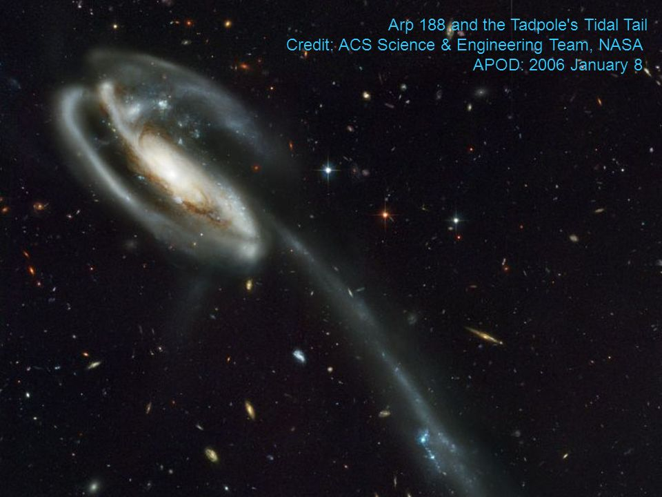 Arp 188 and the Tadpole s Tidal Tail Credit: ACS Science & Engineering Team, NASA APOD: 2006 January 8
