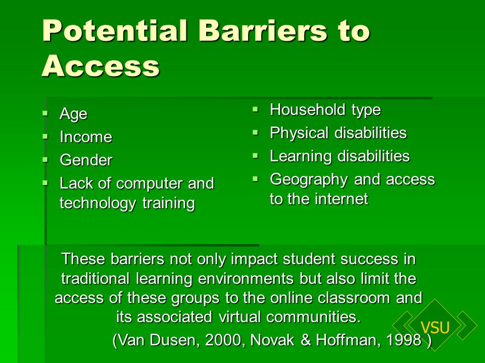 VSU Potential Barriers to Access Age Age Income Income Gender Gender Lack of computer and technology training Lack of computer and technology training Household type Household type Physical disabilities Physical disabilities Learning disabilities Learning disabilities Geography and access to the internet Geography and access to the internet These barriers not only impact student success in traditional learning environments but also limit the access of these groups to the online classroom and its associated virtual communities.