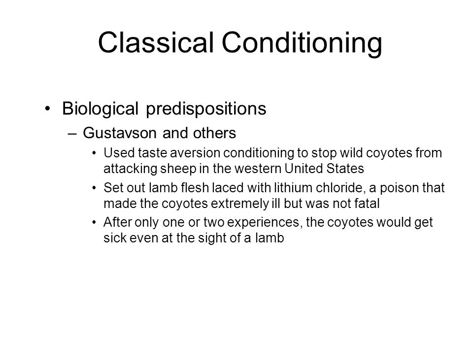 Classical Conditioning Biological predispositions –Gustavson and others Used taste aversion conditioning to stop wild coyotes from attacking sheep in