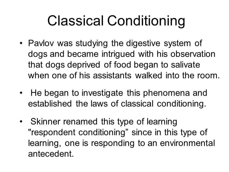 Pavlov was studying the digestive system of dogs and became intrigued with his observation that dogs deprived of food began to salivate when one of hi