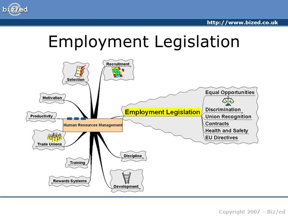 http://www.bized.co.uk Copyright 2007 – Biz/ed Employment Legislation