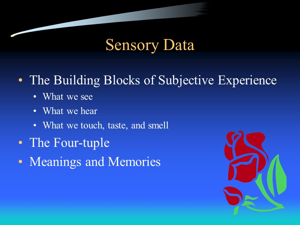 Sensory Data The Building Blocks of Subjective Experience What we see What we hear What we touch, taste, and smell The Four-tuple Meanings and Memorie