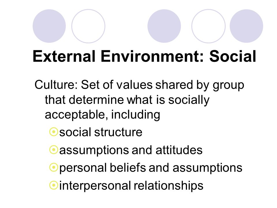 External Environment: Social Culture: Set of values shared by group that determine what is socially acceptable, including social structure assumptions and attitudes personal beliefs and assumptions interpersonal relationships