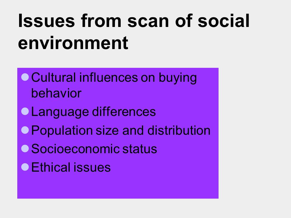 Issues from scan of social environment Cultural influences on buying behavior Language differences Population size and distribution Socioeconomic status Ethical issues