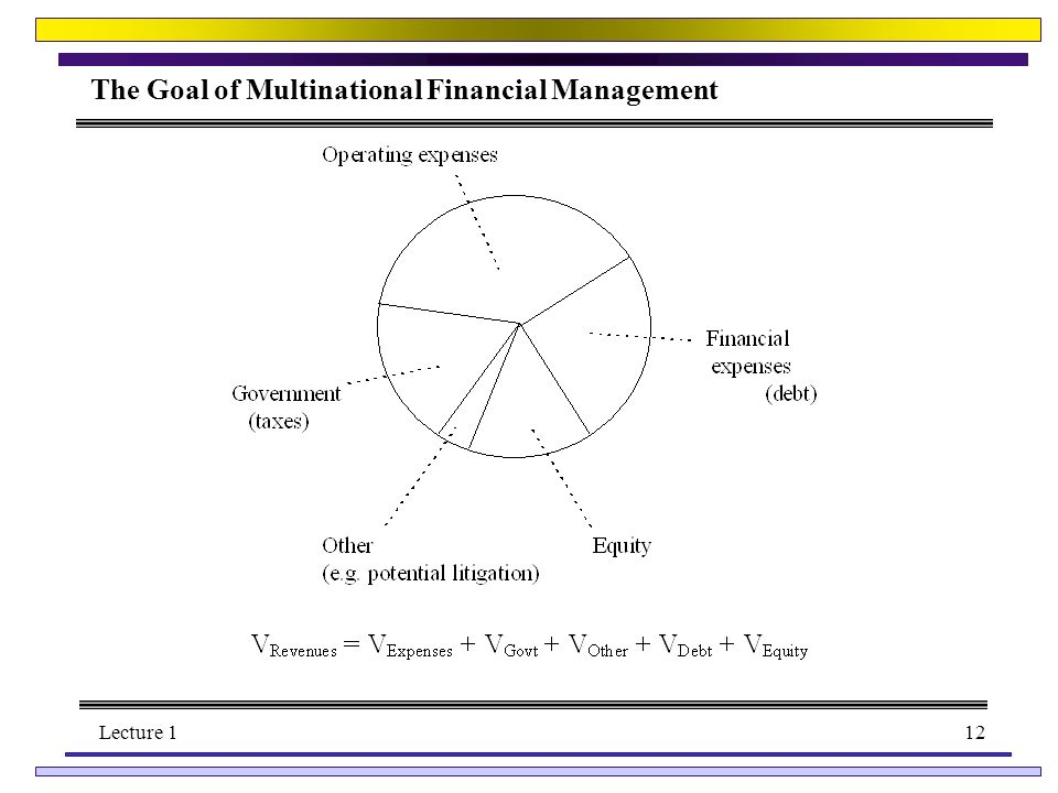 Lecture 112 The Goal of Multinational Financial Management