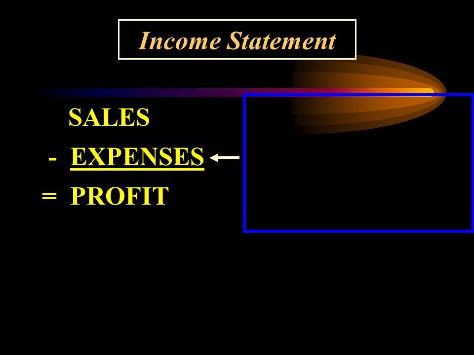 Income Statement SALES - EXPENSES = PROFIT