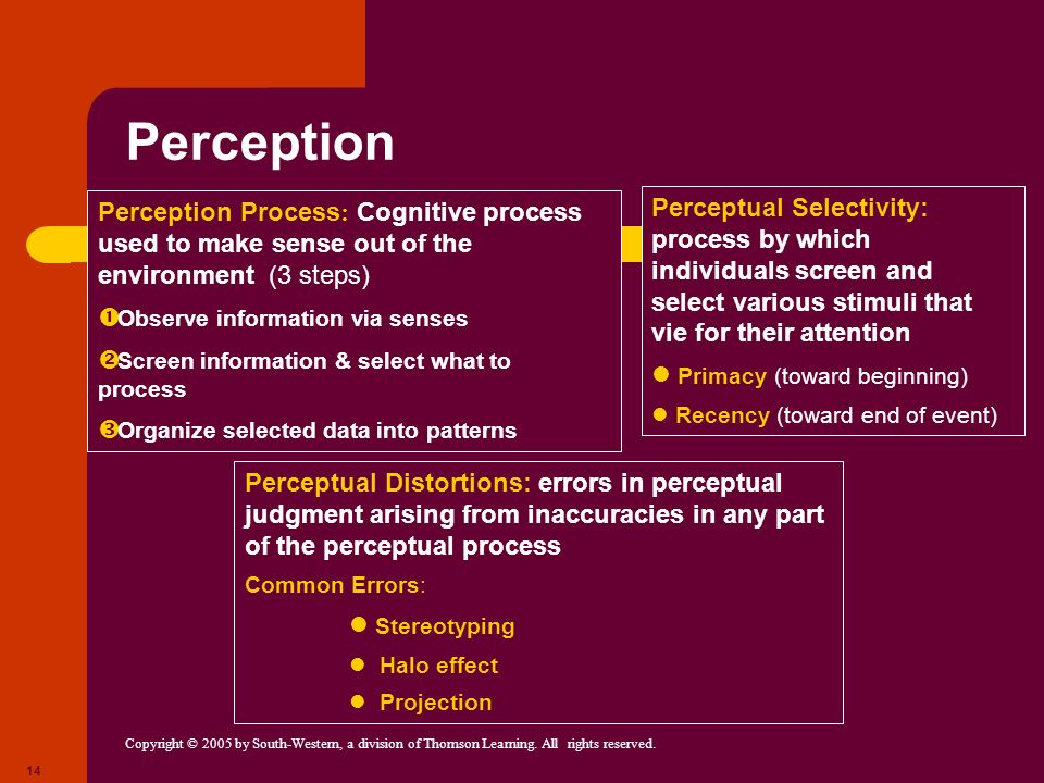 Copyright © 2005 by South-Western, a division of Thomson Learning. All rights reserved. 14 Perception Perception Process : Cognitive process used to m