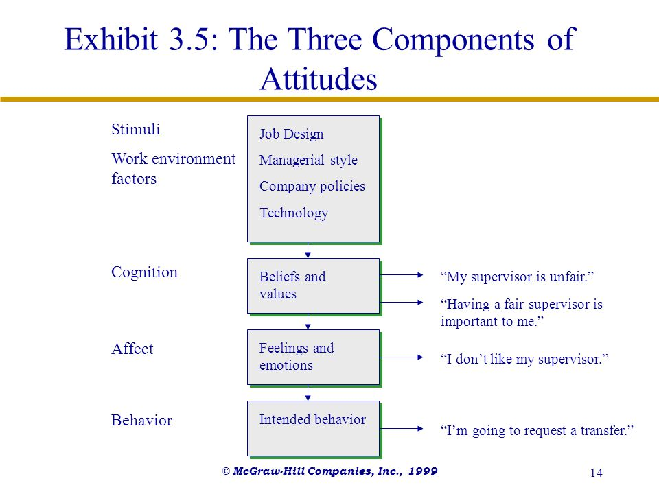 © McGraw-Hill Companies, Inc., 1999 14 Exhibit 3.5: The Three Components of Attitudes Job Design Managerial style Company policies Technology Beliefs