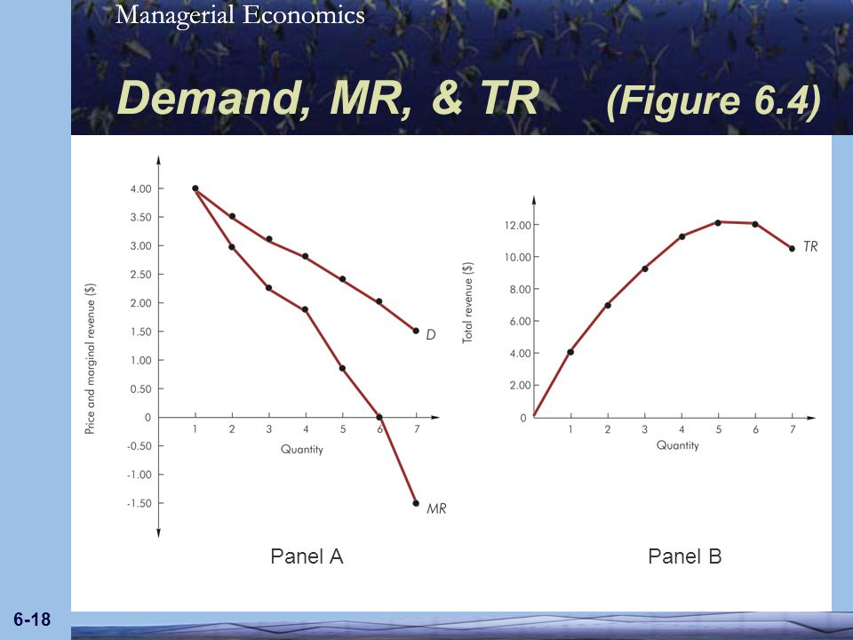 Managerial Economics 6-18 Demand, MR, & TR (Figure 6.4) Panel APanel B