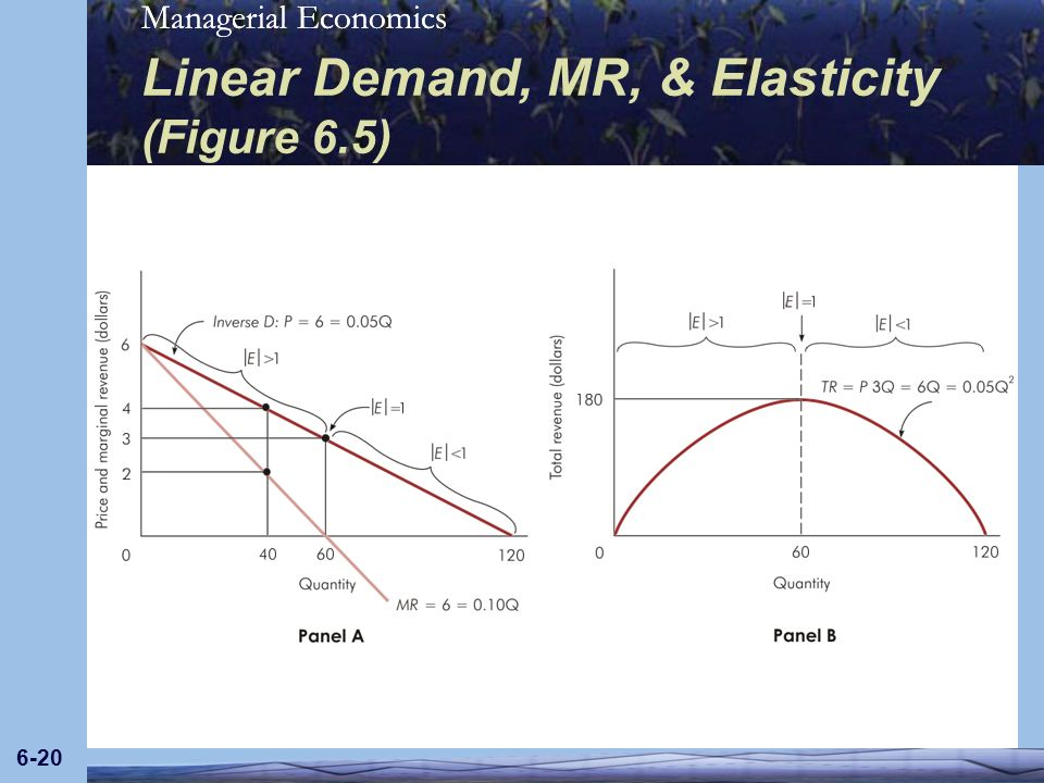 Managerial Economics 6-20 Linear Demand, MR, & Elasticity (Figure 6.5)
