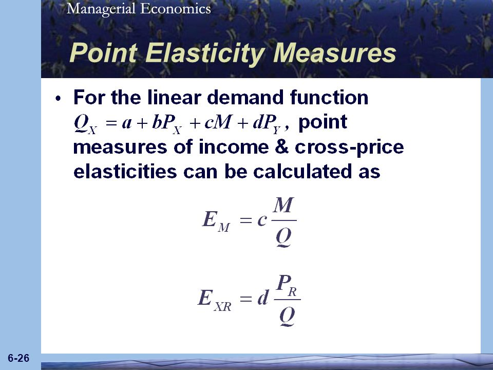 Managerial Economics 6-26 Point Elasticity Measures
