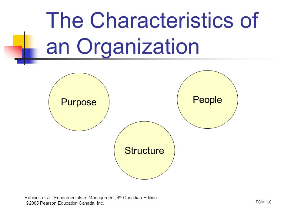 Robbins et al., Fundamentals of Management, 4 th Canadian Edition ©2005 Pearson Education Canada, Inc. FOM 1.6 The Characteristics of an Organization