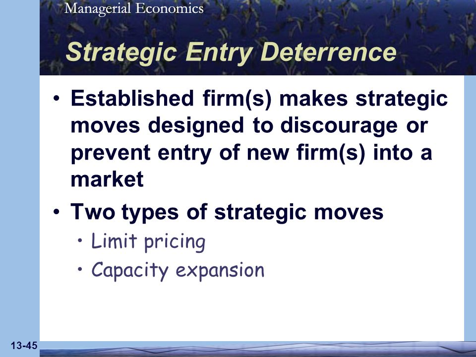 Managerial Economics 13-45 Strategic Entry Deterrence Established firm(s) makes strategic moves designed to discourage or prevent entry of new firm(s)