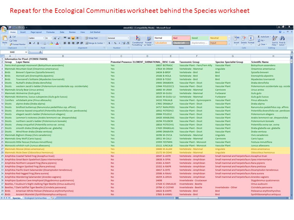 Repeat for the Ecological Communities worksheet behind the Species worksheet