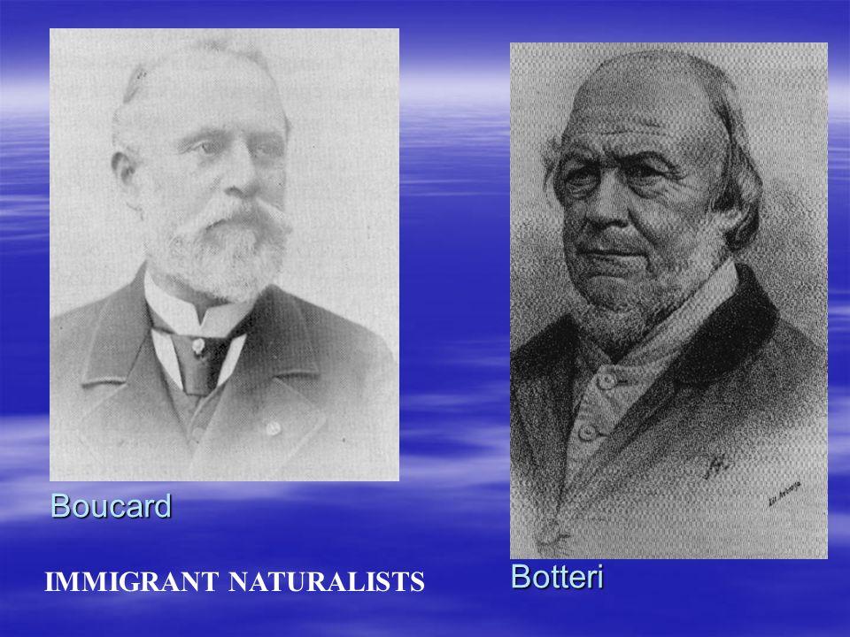 IMMIGRANT NATURALISTS Boucard Botteri