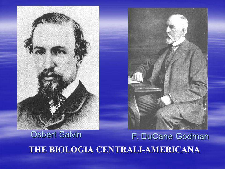 THE BIOLOGIA CENTRALI-AMERICANA Osbert Salvin F. DuCane Godman