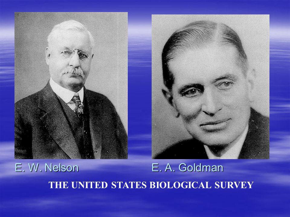 THE UNITED STATES BIOLOGICAL SURVEY E. W. Nelson E. A. Goldman