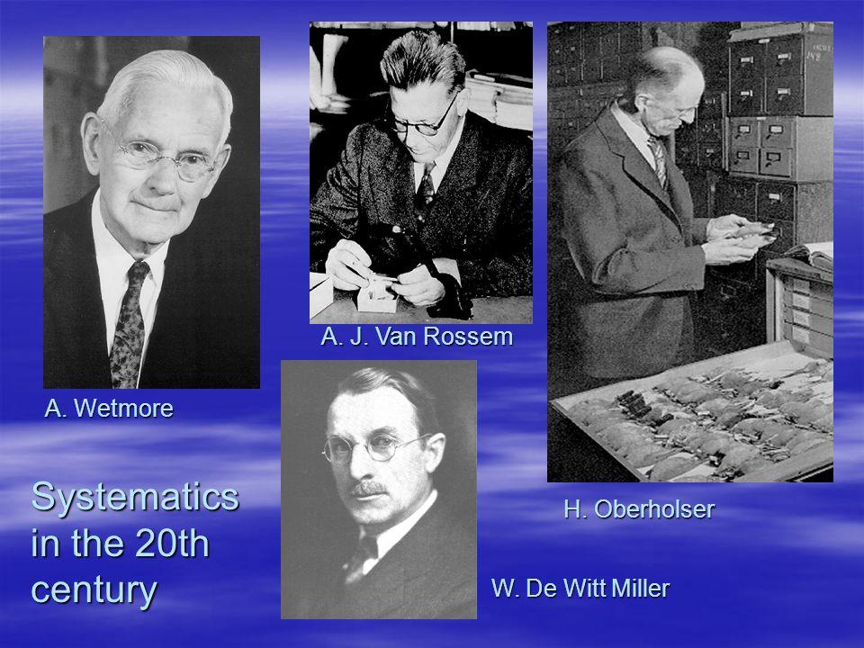 A. Wetmore H. Oberholser A. J. Van Rossem W. De Witt Miller Systematics in the 20th century