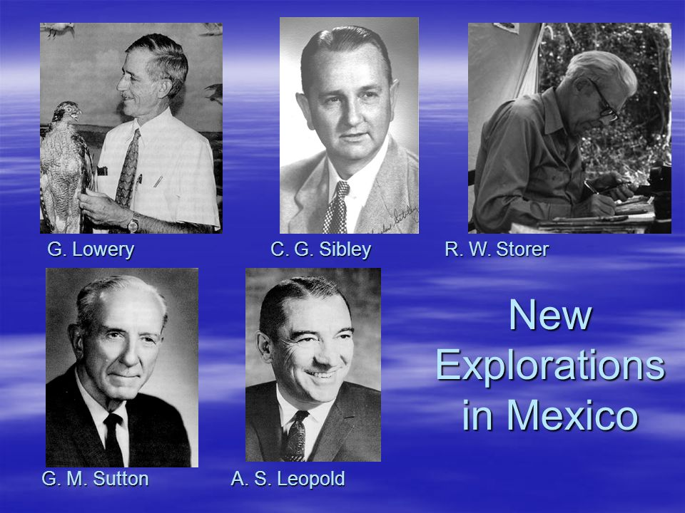 G. Lowery C. G. Sibley R. W. Storer G. M. Sutton A. S. Leopold NewExplorations in Mexico