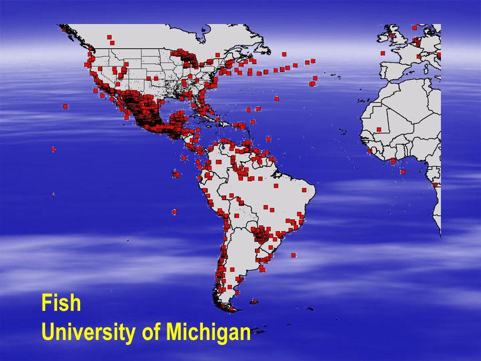 Fish University of Michigan
