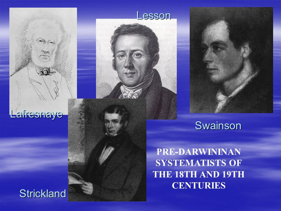 PRE-DARWININAN SYSTEMATISTS OF THE 18TH AND 19TH CENTURIES Lafresnaye Lesson Strickland Swainson