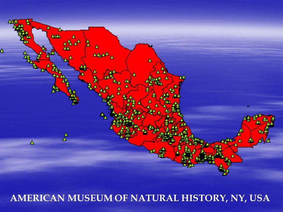 AMERICAN MUSEUM OF NATURAL HISTORY, NY, USA