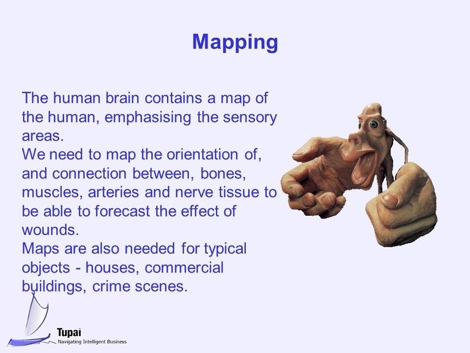 Mapping The human brain contains a map of the human, emphasising the sensory areas. We need to map the orientation of, and connection between, bones,