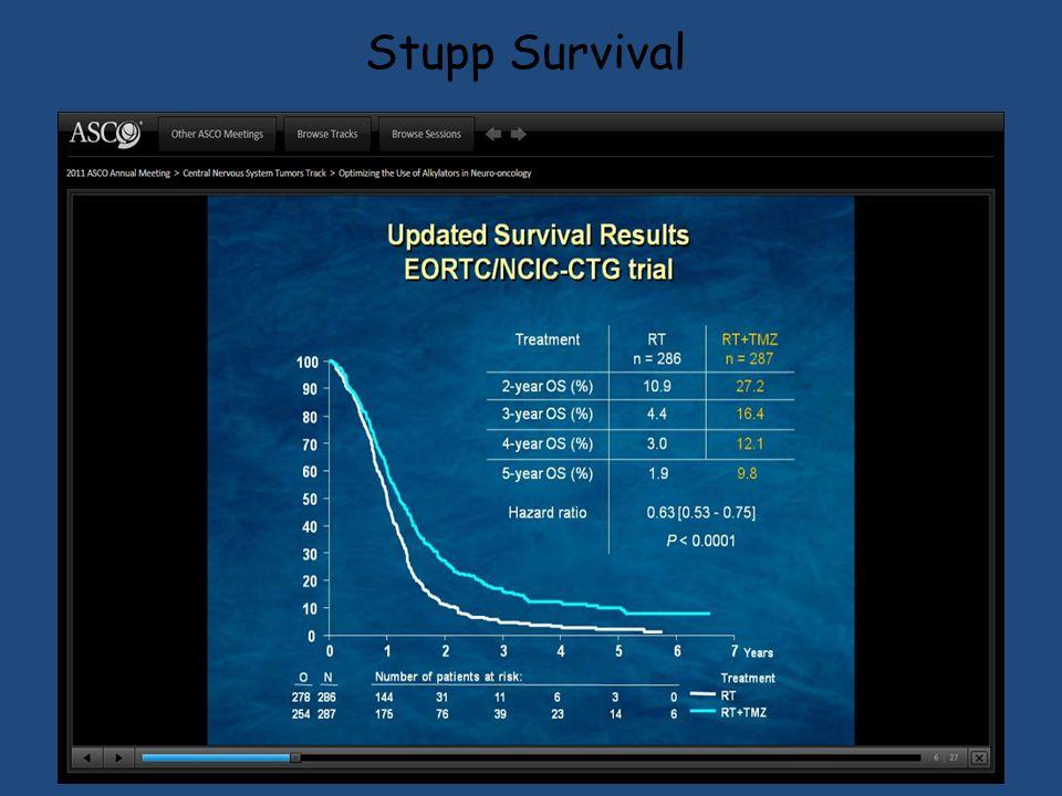 Stupp Survival