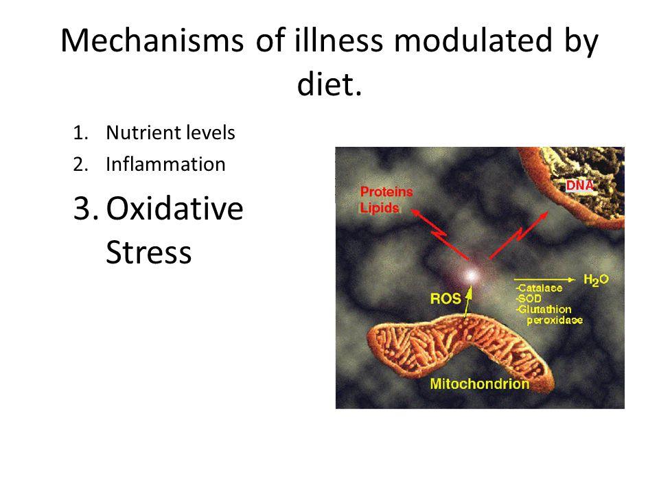 Mechanisms of illness modulated by diet. 1.Nutrient levels 2.Inflammation 3.Oxidative Stress