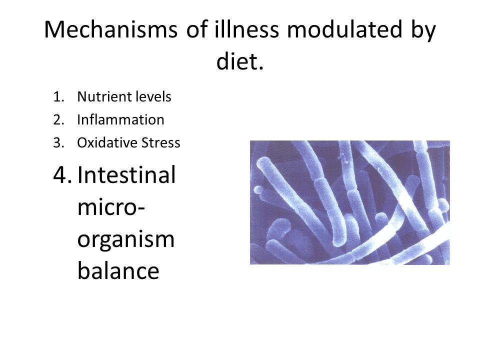 Mechanisms of illness modulated by diet. 1.Nutrient levels 2.Inflammation 3.Oxidative Stress 4.Intestinal micro- organism balance