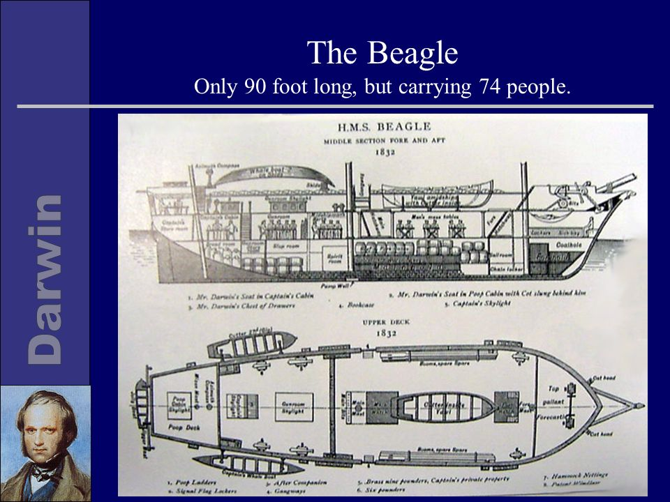 The Beagle Only 90 foot long, but carrying 74 people.