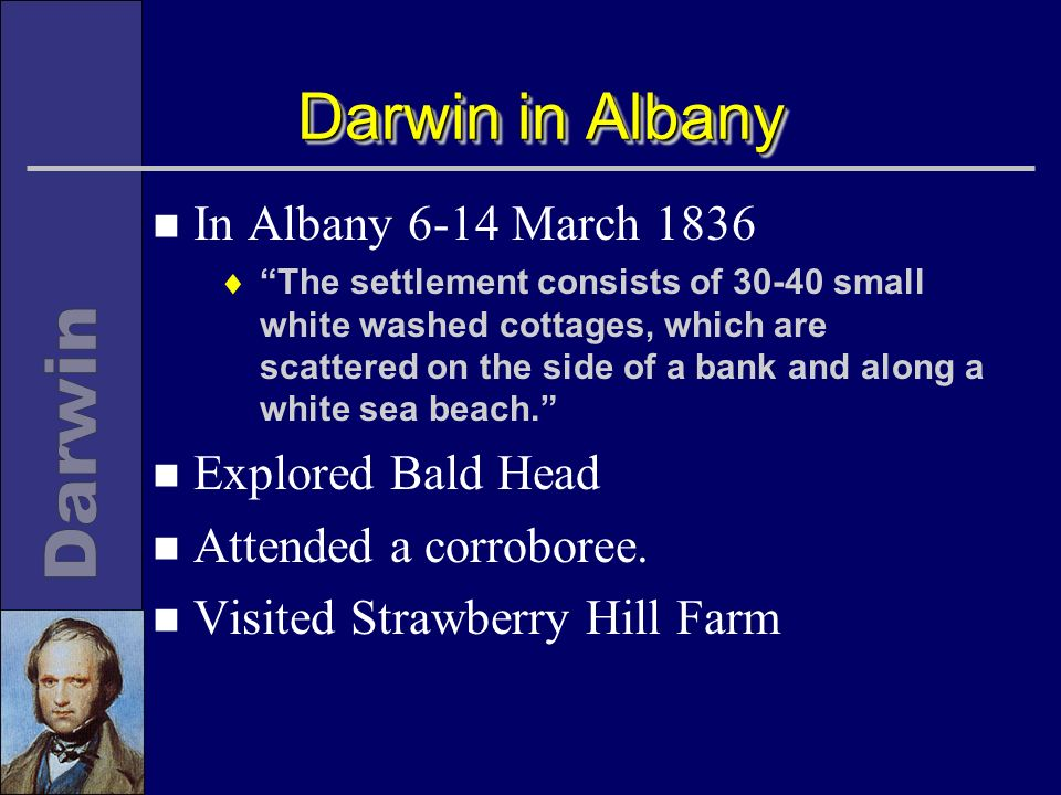 Darwin in Albany n In Albany 6-14 March 1836 The settlement consists of small white washed cottages, which are scattered on the side of a bank and along a white sea beach.