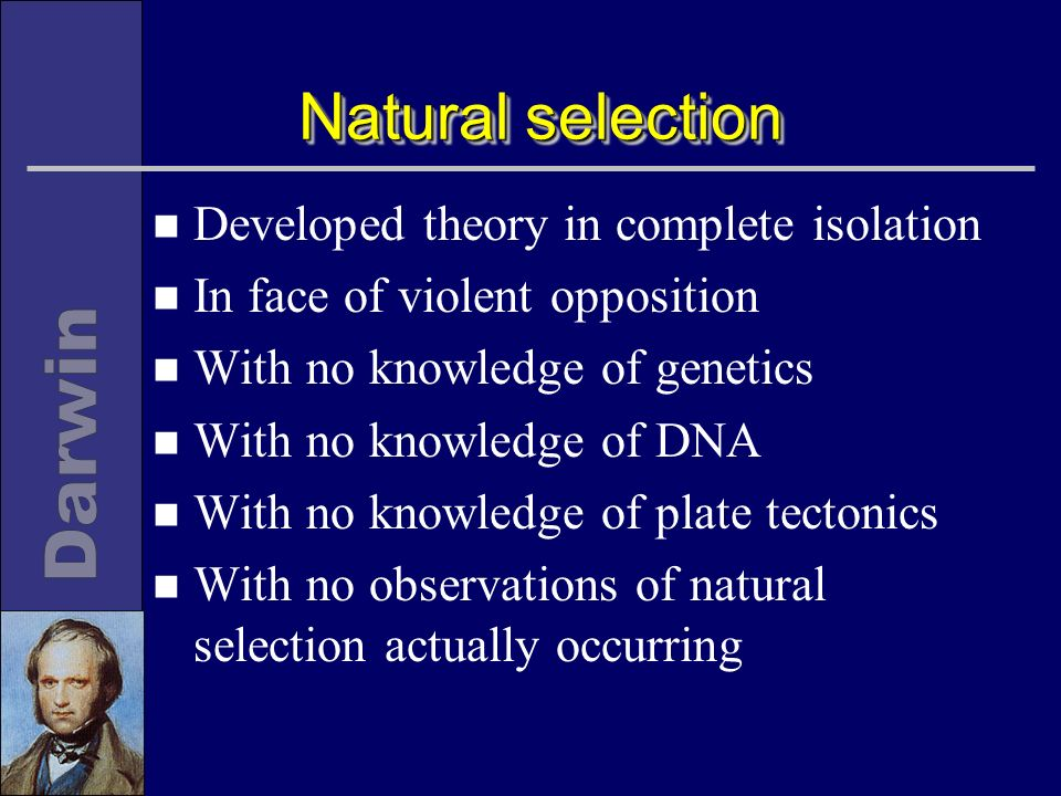 Natural selection n Developed theory in complete isolation n In face of violent opposition n With no knowledge of genetics n With no knowledge of DNA n With no knowledge of plate tectonics n With no observations of natural selection actually occurring