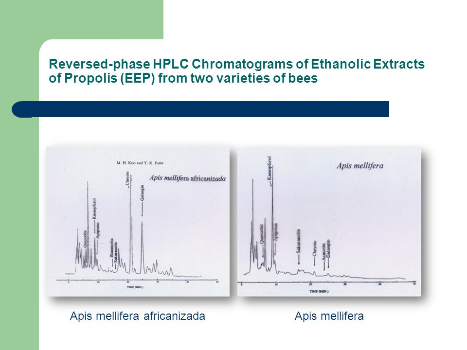 Reversed-phase HPLC Chromatograms of Ethanolic Extracts of Propolis (EEP) from two varieties of bees Apis mellifera africanizadaApis mellifera
