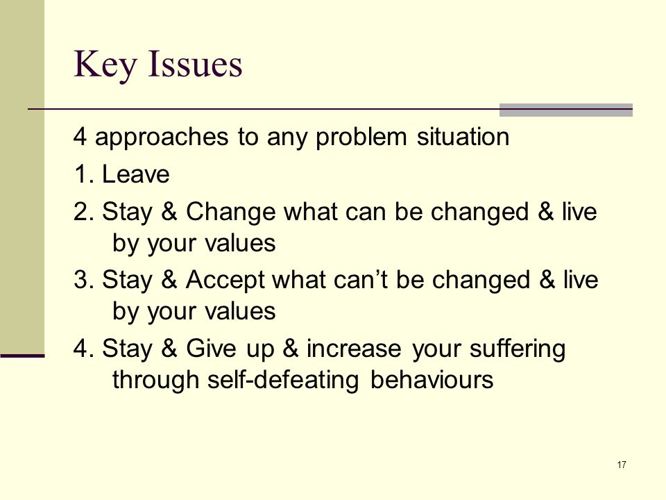 17 Key Issues 4 approaches to any problem situation 1. Leave 2. Stay & Change what can be changed & live by your values 3. Stay & Accept what cant be