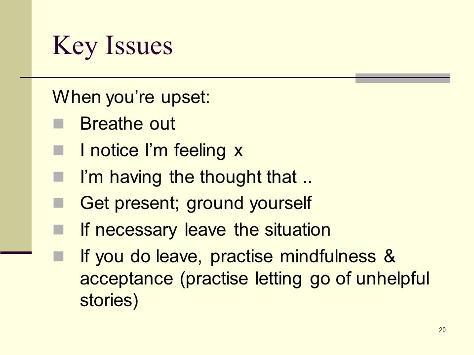 20 Key Issues When youre upset: Breathe out I notice Im feeling x Im having the thought that.. Get present; ground yourself If necessary leave the sit