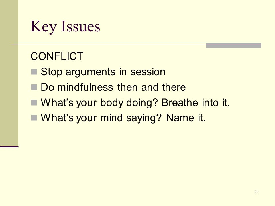 23 Key Issues CONFLICT Stop arguments in session Do mindfulness then and there Whats your body doing? Breathe into it. Whats your mind saying? Name it