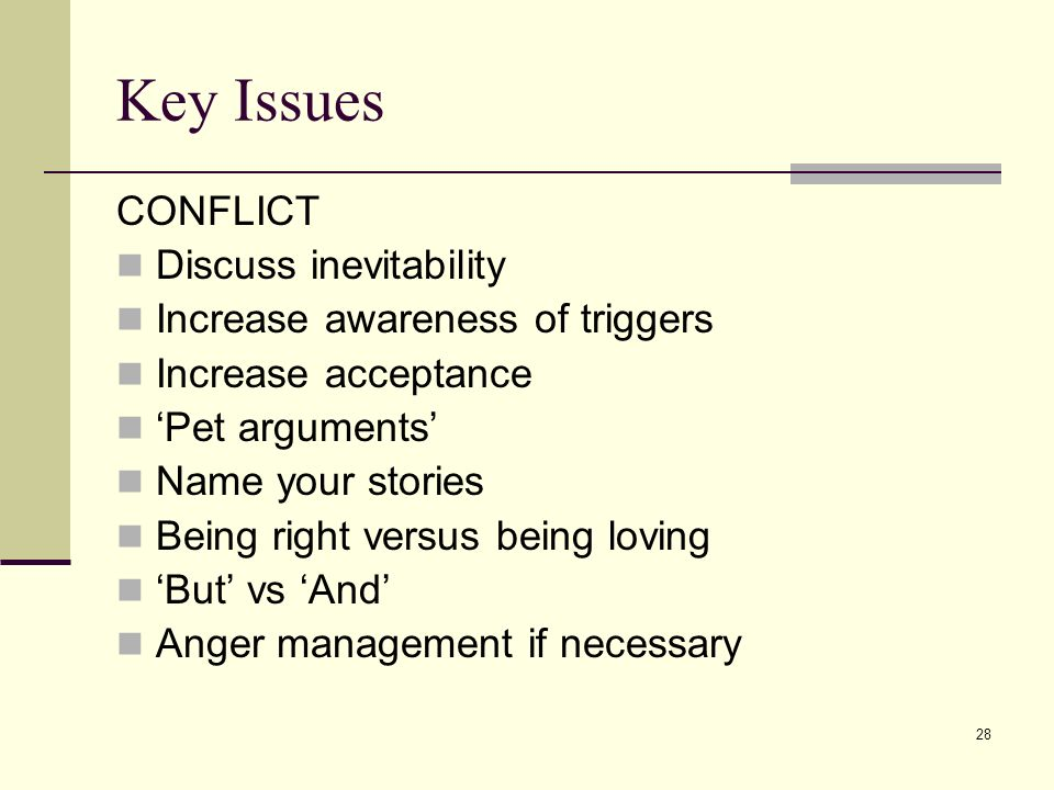 28 Key Issues CONFLICT Discuss inevitability Increase awareness of triggers Increase acceptance Pet arguments Name your stories Being right versus bei