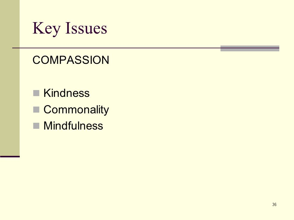 36 Key Issues COMPASSION Kindness Commonality Mindfulness