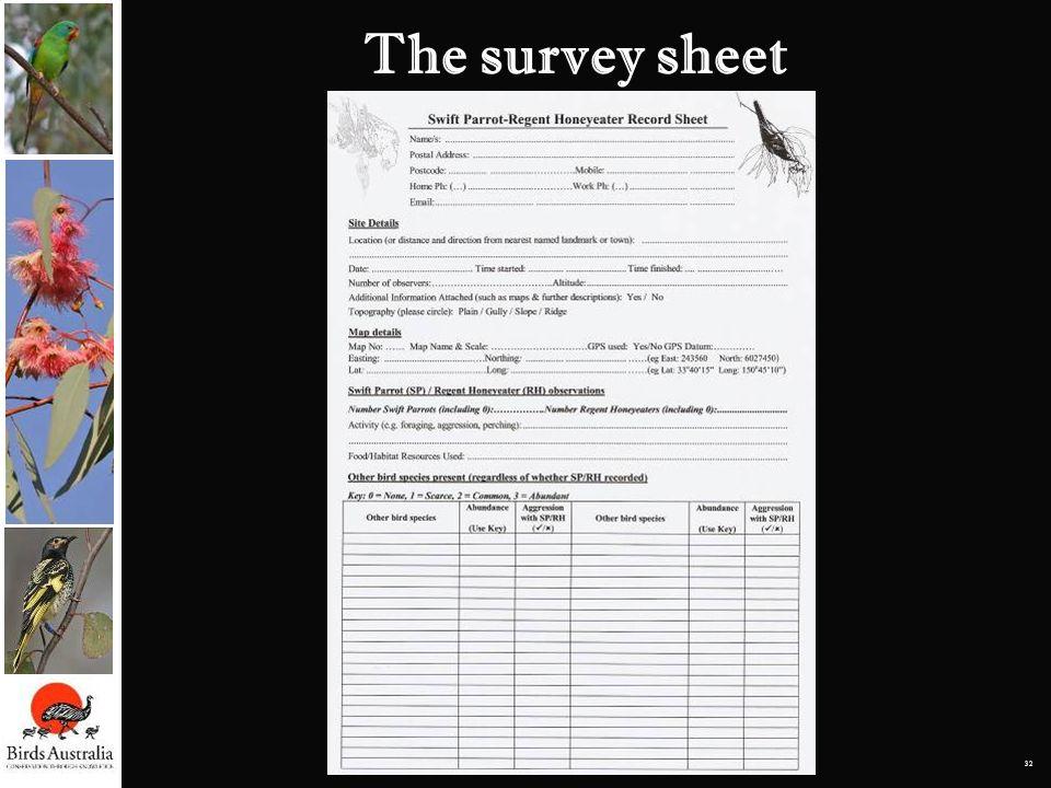 32 The survey sheet