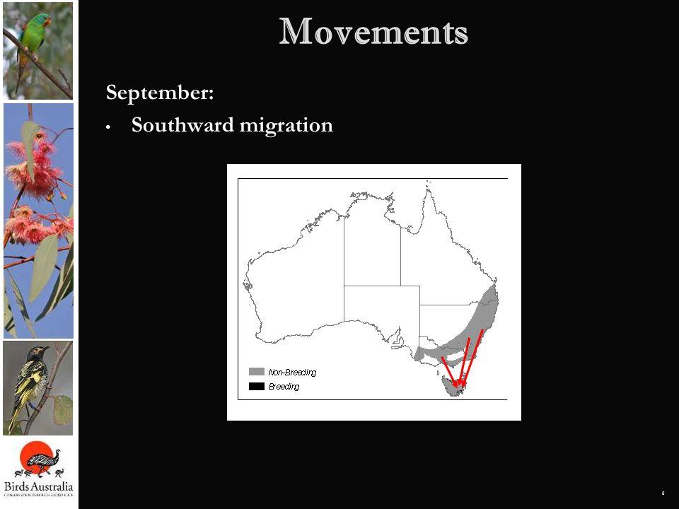 8 Movements September: Southward migration