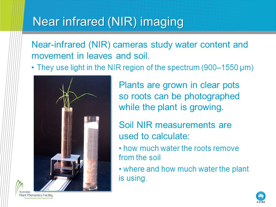 Near-infrared (NIR) cameras study water content and movement in leaves and soil. They use light in the NIR region of the spectrum (900–1550 μm) Near i