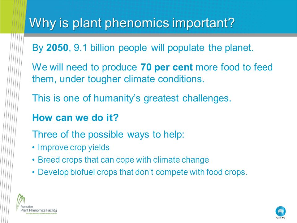 Why is plant phenomics important? By 2050, 9.1 billion people will populate the planet. We will need to produce 70 per cent more food to feed them, un