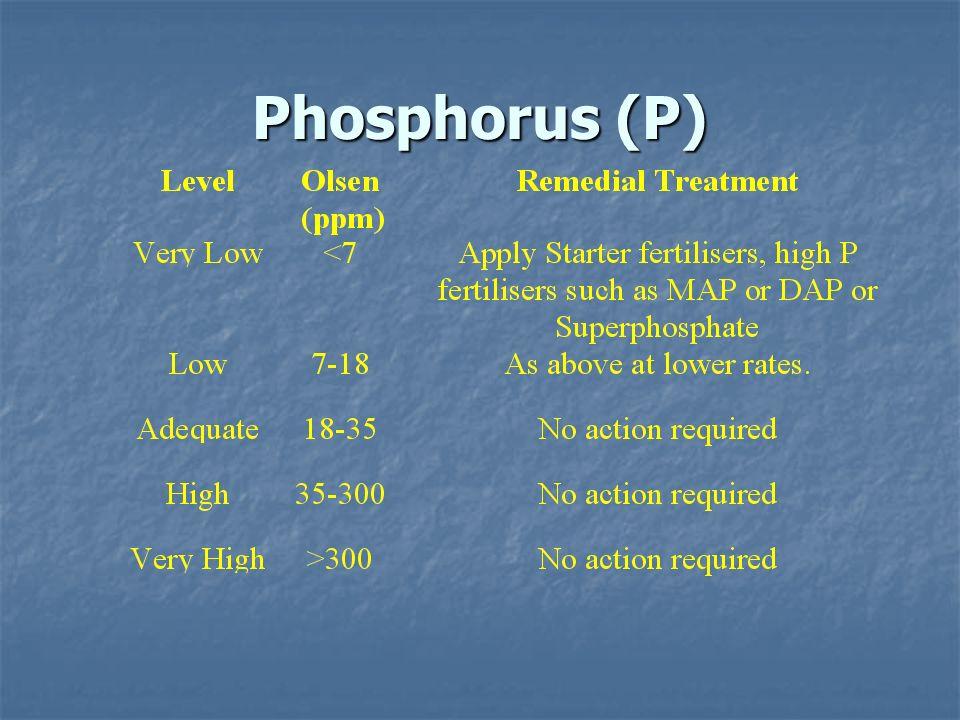 Phosphorus (P)