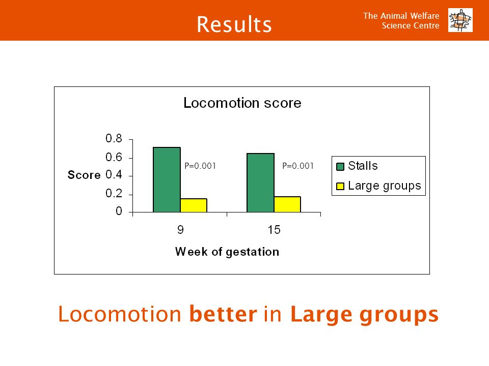 The Animal Welfare Science Centre Locomotion better in Large groups P=0.001 Results