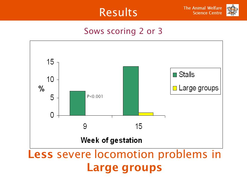 The Animal Welfare Science Centre Less severe locomotion problems in Large groups P<0.001 Sows scoring 2 or 3 Results